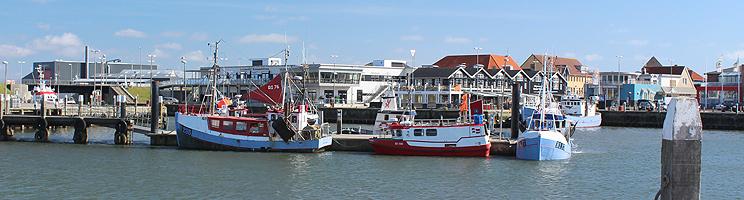 Oplev stemningen i den livlige fiskerihavn i Hvide Sande