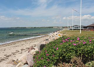 Sommerhuse langs Juelsmindes sydlige strand