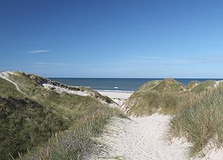 Auf dem Weg zum breiten, weißen Sandstrand bei Kærsgård