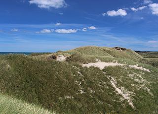Die schöne, hügelige Dünenlandschaft hinter Kærsgård Strand