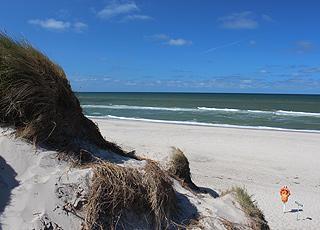 Udsigt over den brede sandstrand fra klitterne i Klegod