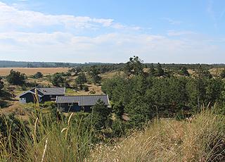 Ferienhäuser in grüner Umgebung in Kollerup