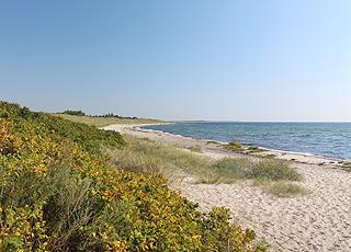 Dejlig sandstrand med lægivende klitter i sommerhusområdet Kramnitse