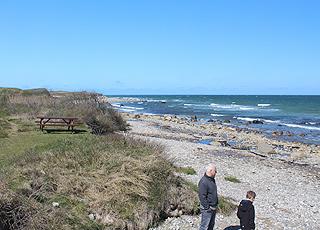 Vor den Ferienhäusern in Nordmarken liegt ein kleiner Sandstrand mit Steinen