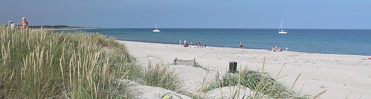 Der schöne Sandstrand mit kleinen Dünen in Østerby auf Læsø