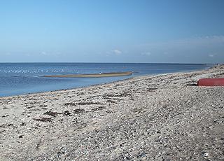 I kan sejle og bade fra Limfjordsstranden i Lendrup