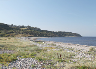 Udsigt mod syd fra sommerhusområdet i Lendrup