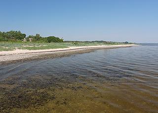 Udsigtsbænk ved sommerhusområdet i LounsUdsigt langs kysten i sommerhusområdet Louns
