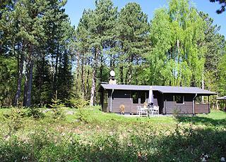 Sommerhus i skovomgivelser i ferieområdet Lundø