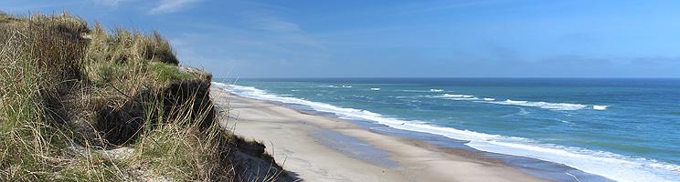 Udsigt over stranden i Lyngby, Thy fra de høje klitter