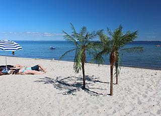 Afslapning ved palmerne på stranden i sommerhusområdet Mommark