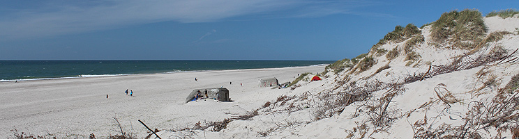I Nymindegab finder I en bred sandstrand med bunkere og høje klitter