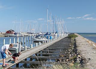 Jungen angeln am gemütlichen Jachthafen in Øster Hurup