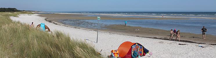 Der schöne Sandstrand von Øster Hurup hat kleine Dünen und seichtes, kinderfreundliches Wasser