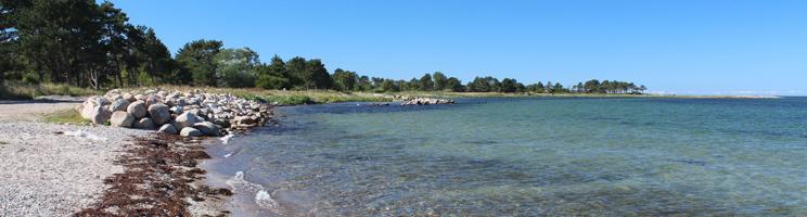 Dejligt badevand ved stranden i sommerhusområdet Reersø på Vestsjælland