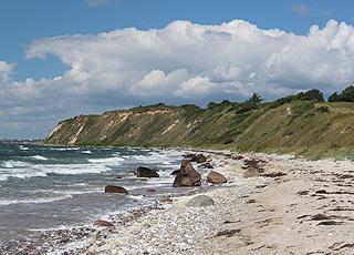 For enden af stranden i Ristinge rejser den 30 meter høje Ristinge Klint sig