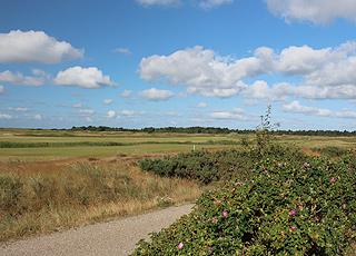 Den udfordrende golfbane i Havneby er omgivet af smuk natur