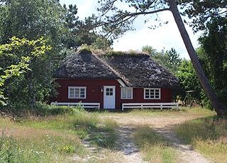 De hyggelige sommerhuse i Toftum er ugenert beliggende i grønne omgivelser