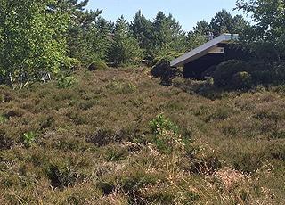 Sommerhusene i Rømø, Vadehav er beliggende i naturskønne hedelandskaber