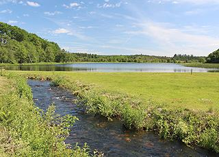 Rørbæk Sø ligger i naturskønne omgivelser og er velegnet til fiskeri og kanosejlads