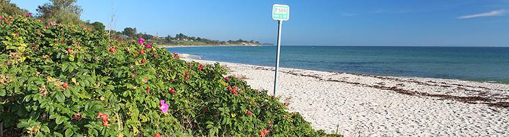 Dejlig sandstrand med lavt, klart badevand i Rude Strand