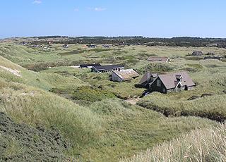 Ferienhäuser in grüner Umgebung hinter den hohen Dünen in Saltum