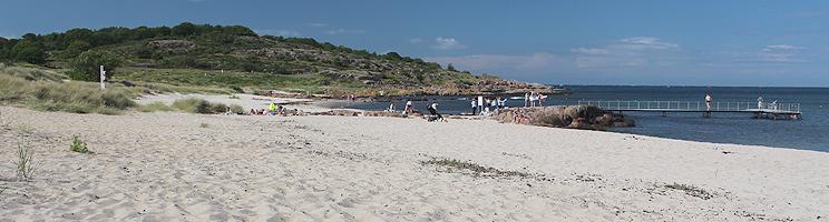 Badegæster på den skønne sandstrand med badebro i Sandvig