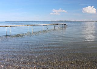 En lang badebro ved stranden i Selde giver jer mulighed for at springe i Limfjorden