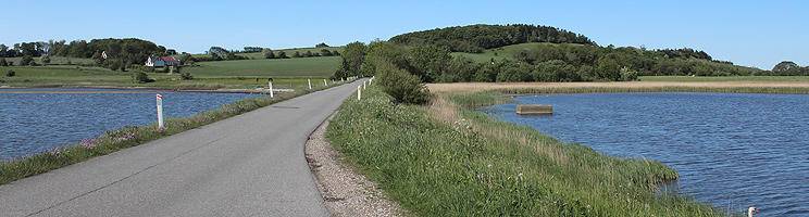 Dike, water with a rich bird life and hilly nature area near Sennels
