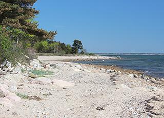 Udsigt langs kysten i sommerhusområdet Sillerslev