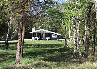 Sommerhus i dejlige skovomgivelser bag kysten i Sillerslev
