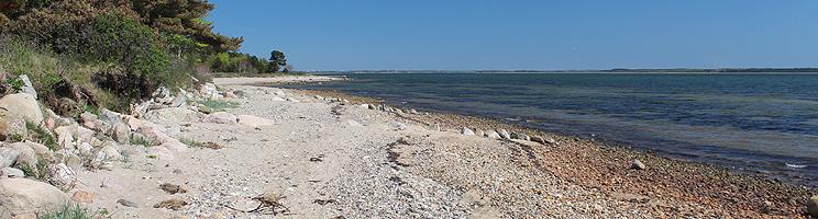 Klart badevand ved stranden i sommerhusområdet Sillerslev