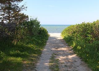 Sti mellem sommerhusene til stranden i ferieområdet Skåstrup