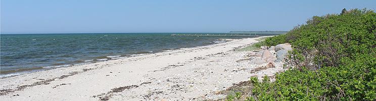 Fin sandstrand med lang badebro i sommerhusområdet Skåstrup