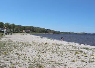 Den brede sandstrand ved lystbådehavnen i Skive