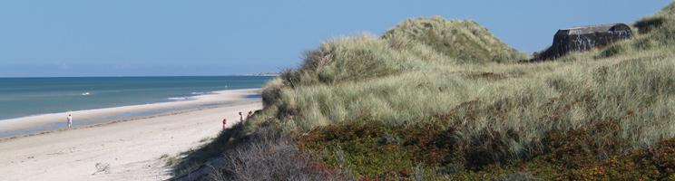 Den brede sandstrand med de høje, grønne klitter i Skiveren ved Skagen