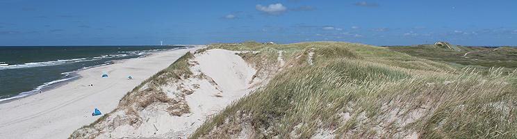 Udsigt over stranden og det kuperede klitområde i Skodbjerge