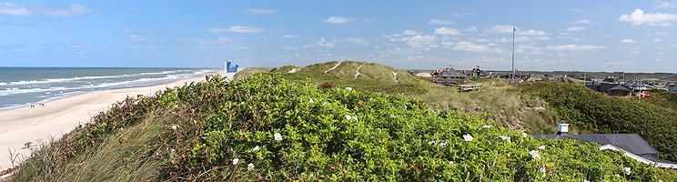 Udsigt over den brede sandstrand og sommerhusene bag stranden fra de høje klitter i Søndervig