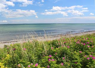Aussicht auf den Strand und das Meer im Ferienhausgebiet Spodsbjerg