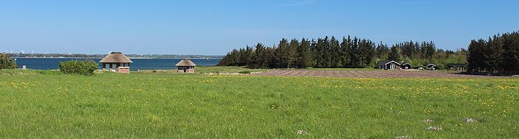 Sommerhuse i skovkanten bag stranden i Spøttrup