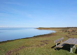 Hyggeligt picnicområde ved fjordens stille vand i Stauning