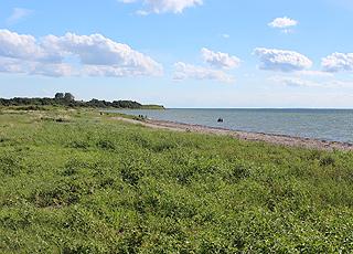 Udsigt langs kysten fra de grønne områder bag stranden i Stoense