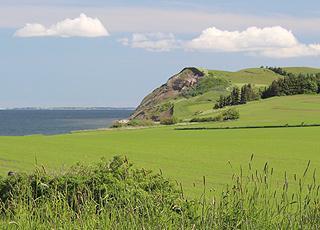 Udsigt over de grønne områder til Hanklit og Limfjorden fra et sommerhus i Sundby, Mors