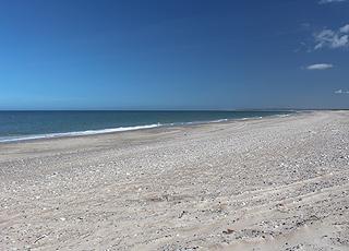 Badestranden i Thorup Strand