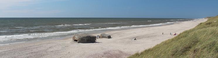 Den brede sandstrand med klitter og bunkere i Vedersø Klit