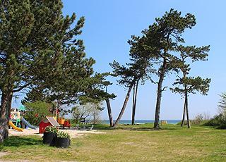 Legeplads og grønne områder bag stranden i Vejlby Fed