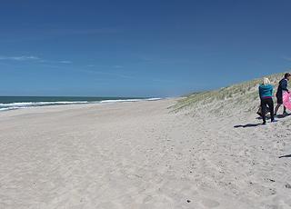 Vejlby Klit byder på en bred, hvid sandstrand med høje klitter