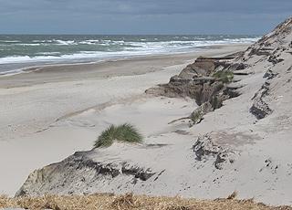 Den brede sandstrand med meget høje klitter i Vester Husby