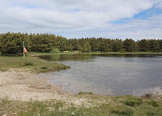 Hyggelig skovsø med lille sandstrand bag Vesterhavsstranden i Vester Husby