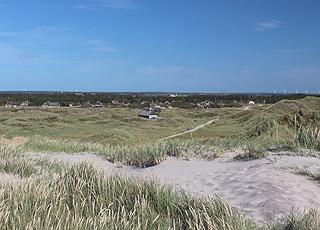 Sommerhusene i Vester Husby er beliggende i det kuperede klitområde og i skoven bag stranden